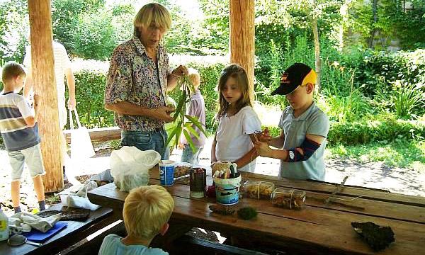 Liz Basteln Naturlich Familien Mit Kindern Ab 3 Jahre